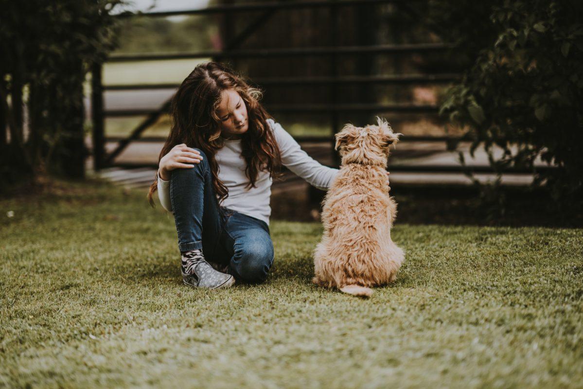 О чём стоит спросить собаку