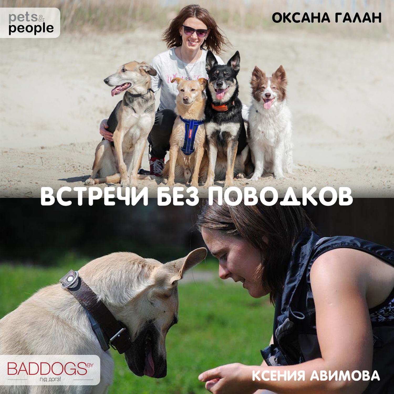 Подкаст про кастрацию собак