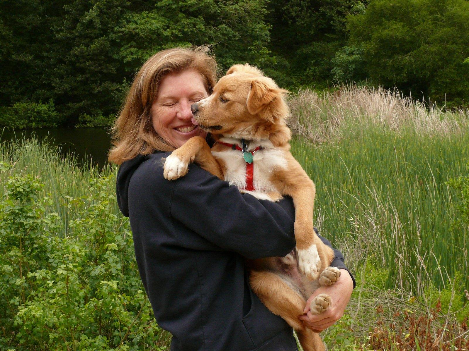 По мотивам вебинара про иерархию: как же воспитывать щенка?